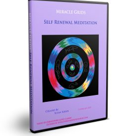 Self Renewal one of best guided meditation videos at the Miracle Grids Shop